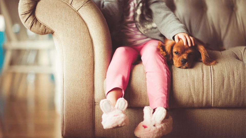 Cățel mângâiat pe cap de o fetiță stând pe o canapea.