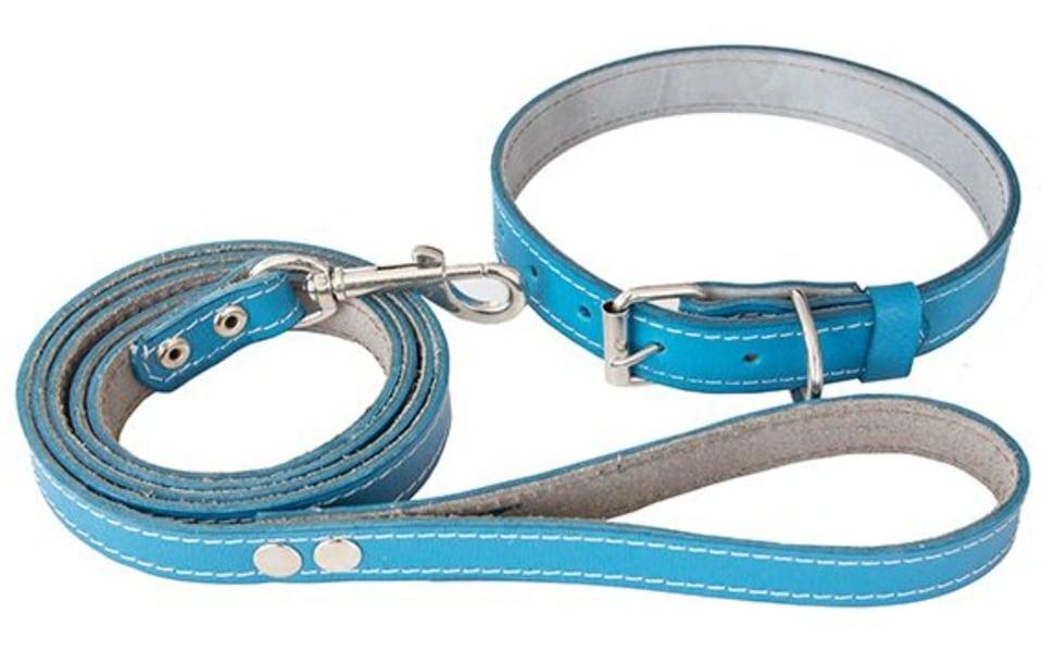 Lesă pentru câini zgardă din piele naturală albastră.