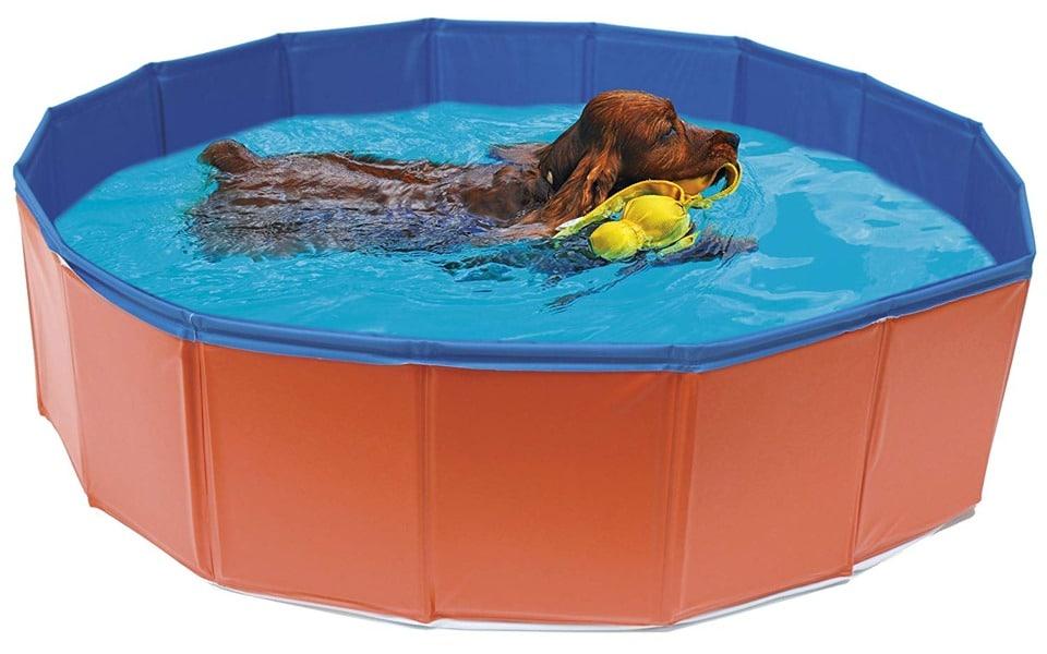 Cățel cu o jucărie în gură înotând într-o piscină roșie.