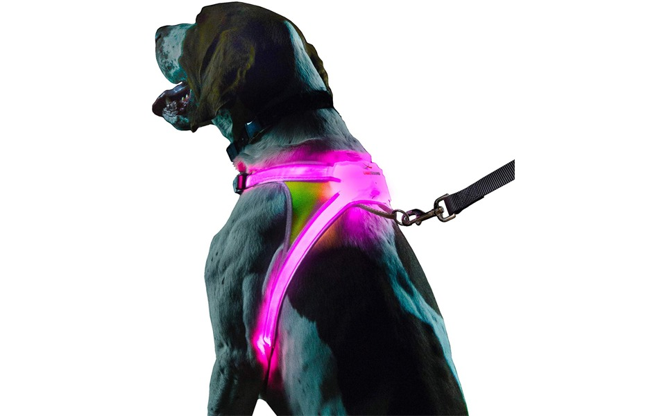 Vestă pentru câini Noxgear LightHound.
