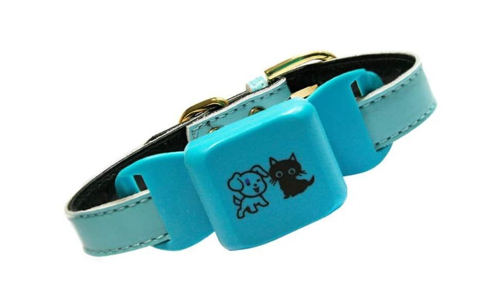 Zgardă localizare GPS, Caros pentru câini albastră.