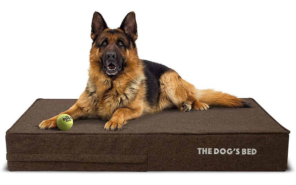 Caine ciobanesc german pe o saltea ortopedica The Dog's Bed.